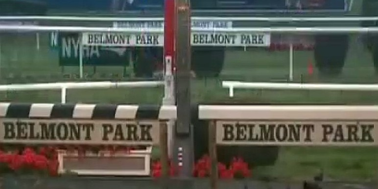 The 99th running of the G1 $750,000 Jockey Club Gold Cup features a competitive field of 7 who will battle for 1-1/4 miles over the Belmont dirt course.   This…