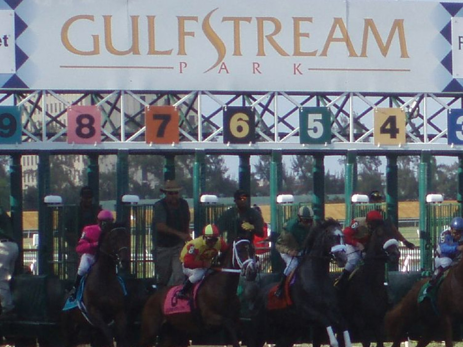Saturday's 14th race at Gulfstream Park will be the G1 $1,000,000 Florida Derby.  A field of 9 3yr olds will run 1-1/8 miles around the 2-turn dirt course….