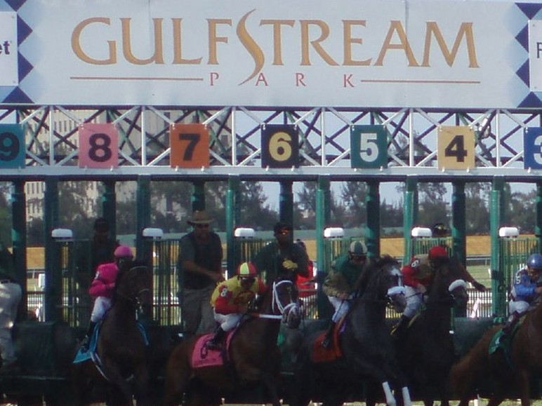 Another spot in the gate at the Kentucky Derby is up for grabs this Saturday in the $400,000 Fountain of Youth Stakes at Gulfstream Park.  10 probable starters…