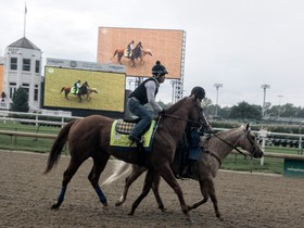 The featured 11th race on the Belmont Park card is the 1-1/2 mile Belmont Stakes which will be run around 2 sweeping turns over Belmont's dirt course….