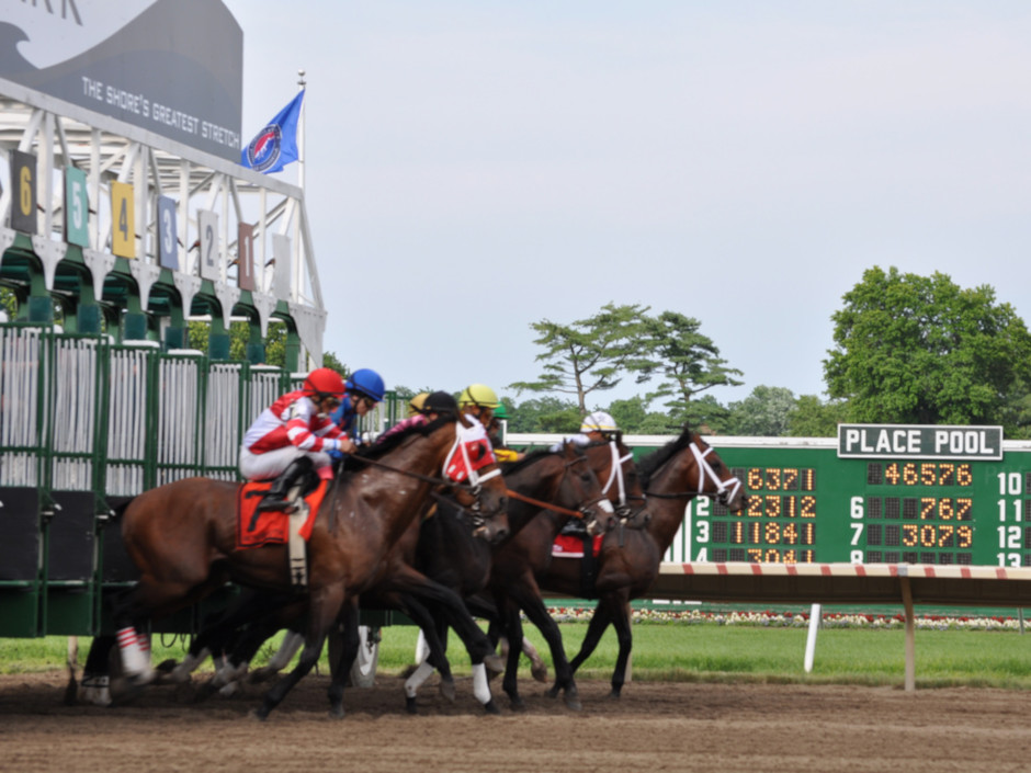 Monmouth Park in New Jersey will host their premier race of the summer, the G1 Haskell Invitational.  Run at 1-1/8 miles around 2 turns on the dirt, the…