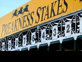 The 2nd leg of the 2018 Triple Crown will take place this Saturday in Baltimore, Maryland.  Pimlico's 13th race will be the Preakness Stakes, where 7 challengers…