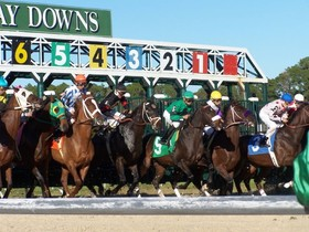 The Derby trail continues this week with the $250,000 G3 Sam F. Davis Stakes.  The 1-1/16th mile race around 2 turns on Tampa Bay Downs' dirt course will…