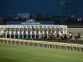 Woodbine Racetrack in Canada will host their premier fall stake this Saturday with the running of the Ricoh Woodbine Mile.  This one mile turf test is a G1…